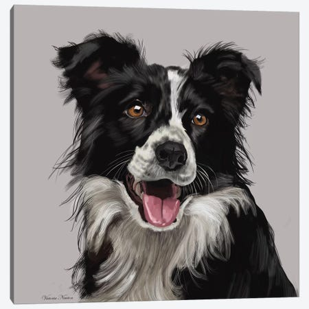 Border Collie Canvas Print #VNE14} by Vicki Newton Canvas Art Print