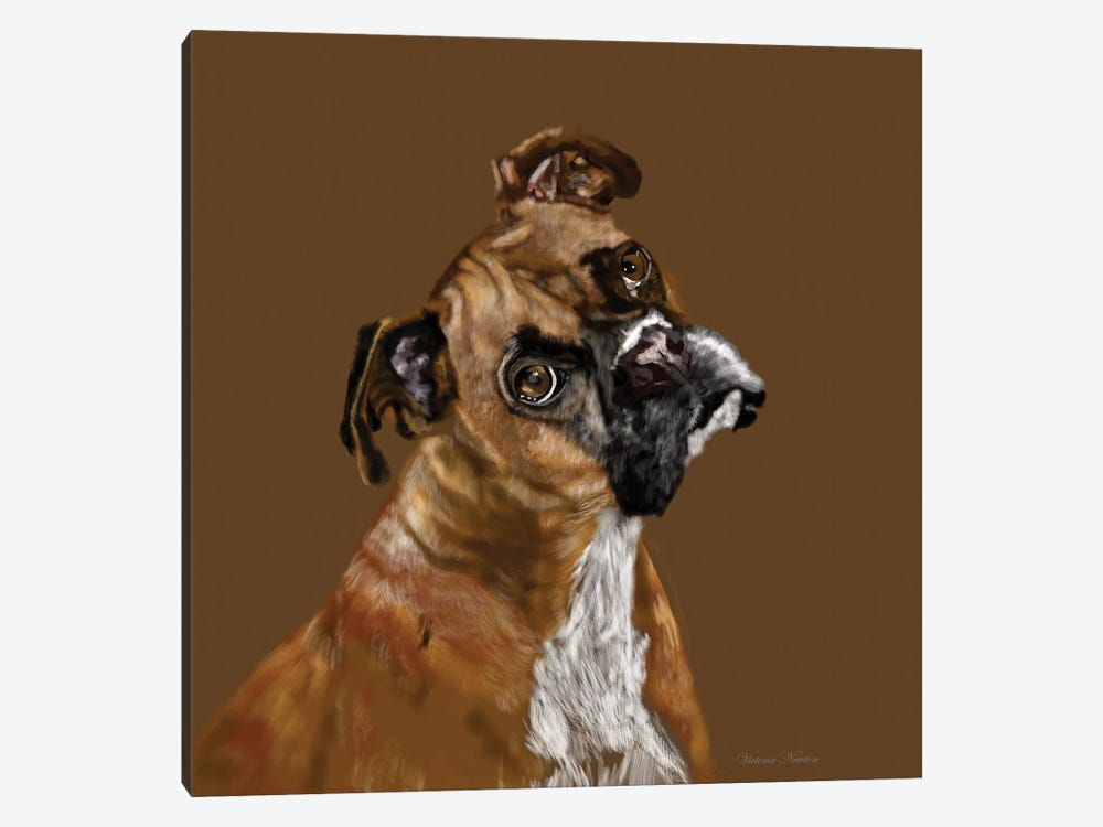 Boxer Portrait by Vicki Newton 1-piece Canvas Wall Art