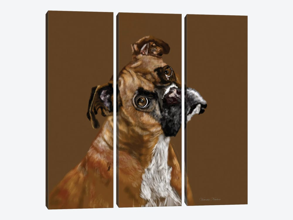 Boxer Portrait by Vicki Newton 3-piece Canvas Art