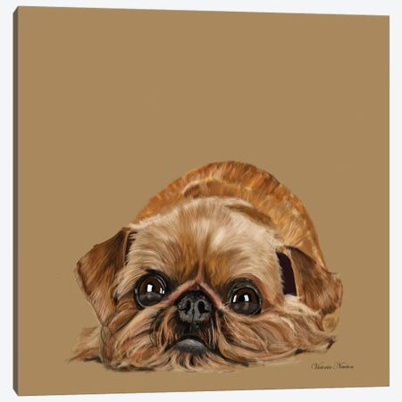 Brussels Griffon Canvas Print #VNE19} by Vicki Newton Canvas Wall Art