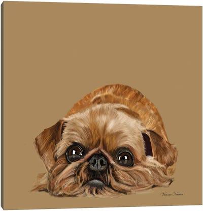 Brussels Griffon Canvas Art Print