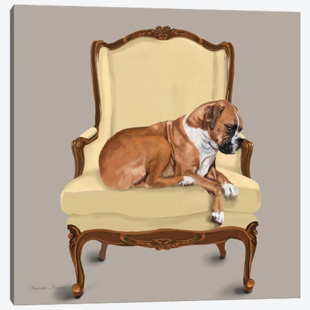 Boxer On Chair Canvas Print #VNE20} by Vicki Newton Art Print
