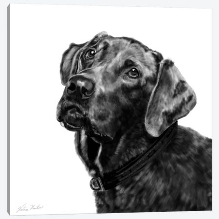 Choc Lab Canvas Print #VNE26} by Vicki Newton Canvas Art