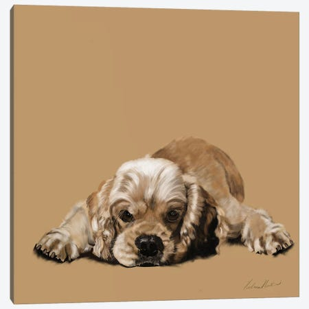 Cocker Spaniel 3-Piece Canvas #VNE27} by Vicki Newton Canvas Wall Art