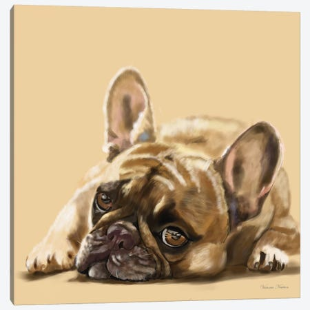 French Bulldog Resting Canvas Print #VNE33} by Vicki Newton Canvas Artwork