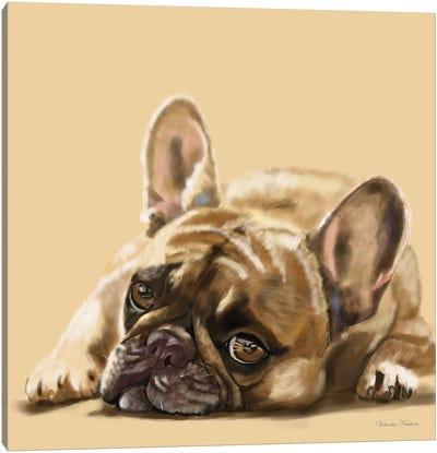 French Bulldog Resting Canvas Art Print
