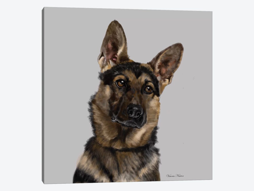 German Shepherd by Vicki Newton 1-piece Canvas Print