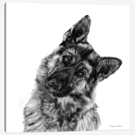 German Shepherd Curious Canvas Print #VNE36} by Vicki Newton Art Print