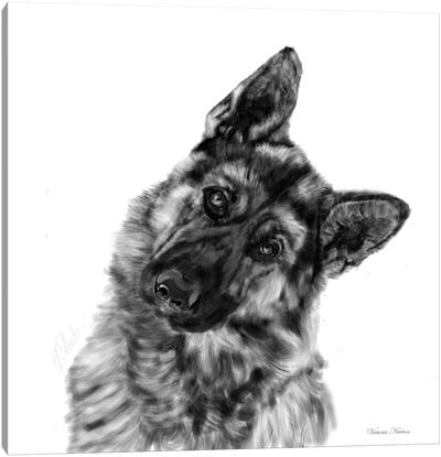 German Shepherd Curious Canvas Art Print