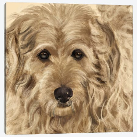 Golden Doodle Canvas Print #VNE37} by Vicki Newton Canvas Art Print