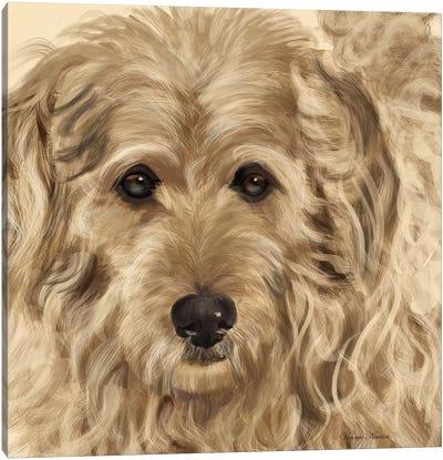 Golden Doodle Canvas Art Print