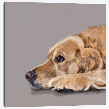Golden Retriever Canvas Print #VNE38} by Vicki Newton Canvas Artwork