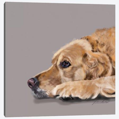 Golden Retriever Canvas Print #VNE38} by Vicki Newton Canvas Artwork