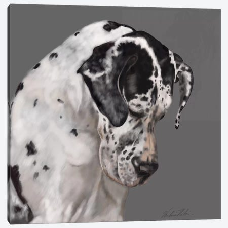 Great Dane Canvas Print #VNE39} by Vicki Newton Canvas Wall Art