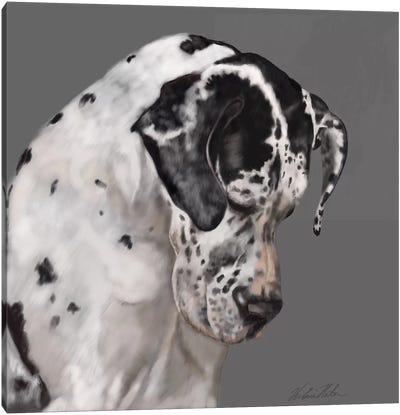 Great Dane Canvas Art Print