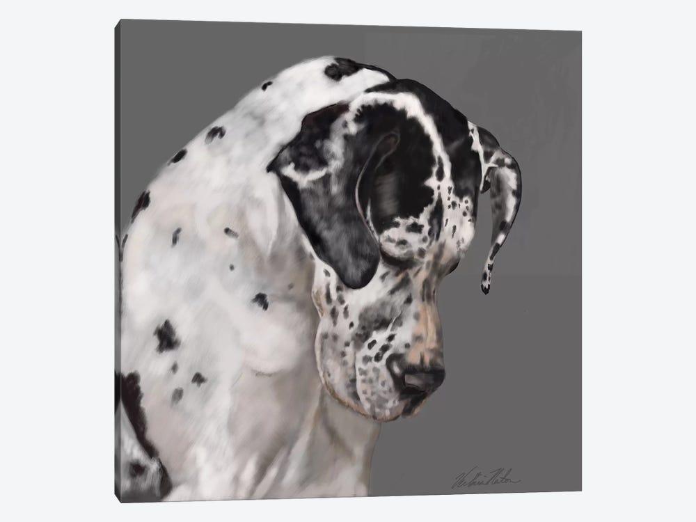 Great Dane by Vicki Newton 1-piece Canvas Artwork