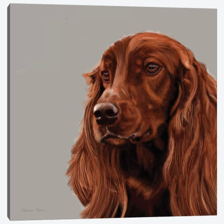 Irish Setter Canvas Print #VNE42} by Vicki Newton Art Print