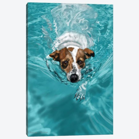 Jack Russell Swimming Canvas Print #VNE45} by Vicki Newton Canvas Art