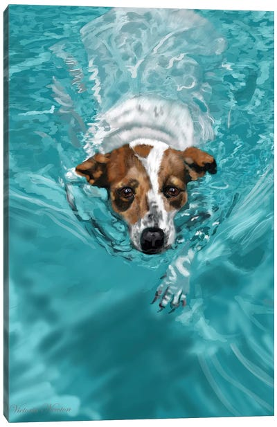 Jack Russell Swimming Canvas Art Print