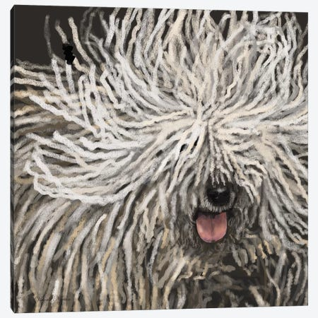 Komondor Canvas Print #VNE49} by Vicki Newton Canvas Art Print