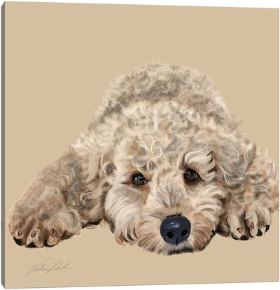 Labradoodle Canvas Art Print