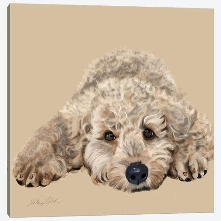 Labradoodle Canvas Print #VNE50} by Vicki Newton Canvas Art
