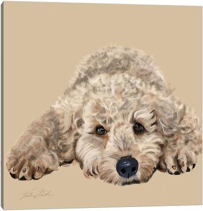 Labradoodle Canvas Art Print