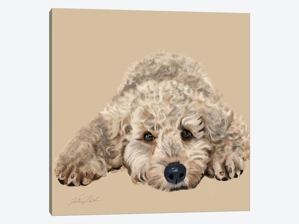 Labradoodle by Vicki Newton 1-piece Canvas Print