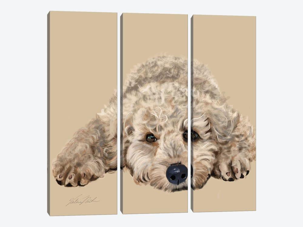 Labradoodle by Vicki Newton 3-piece Art Print