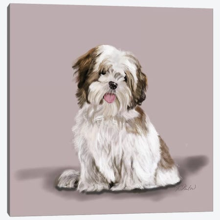 Lhasa Apso Canvas Print #VNE51} by Vicki Newton Canvas Artwork