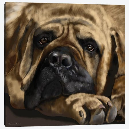 Mastiff Canvas Print #VNE53} by Vicki Newton Canvas Artwork