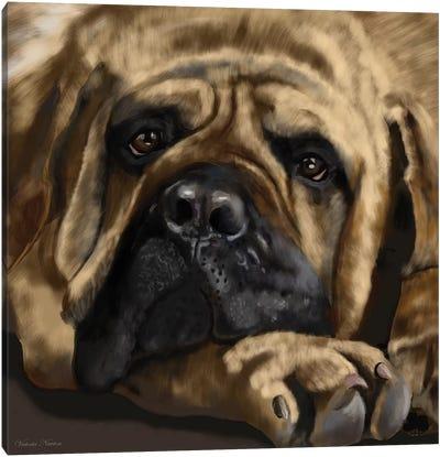 Mastiff Canvas Art Print