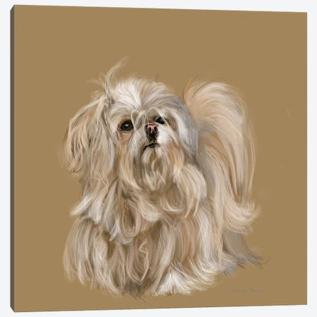 Mika Canvas Print #VNE54} by Vicki Newton Canvas Print
