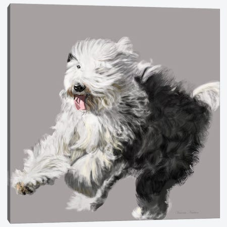 Old English Sheepdog Canvas Print #VNE55} by Vicki Newton Art Print