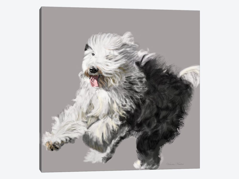 Old English Sheepdog by Vicki Newton 1-piece Canvas Wall Art