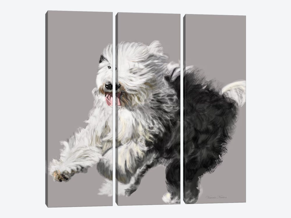 Old English Sheepdog by Vicki Newton 3-piece Canvas Artwork