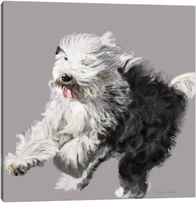 Old English Sheepdog Canvas Art Print