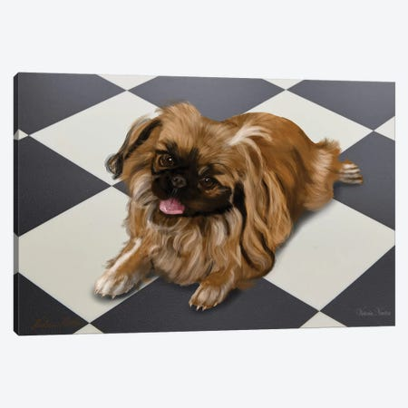 Peke Canvas Print #VNE57} by Vicki Newton Canvas Art Print