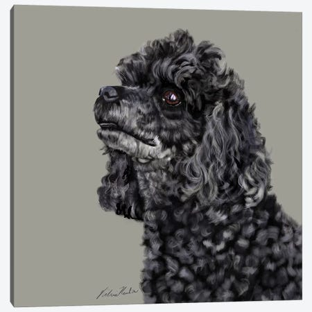 Poodle Canvas Print #VNE59} by Vicki Newton Canvas Artwork