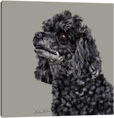 Poodle Canvas Art Print