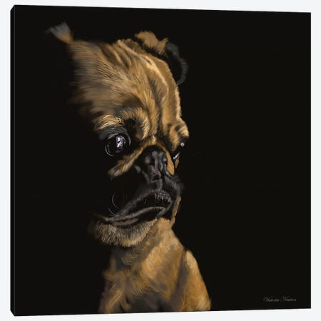 Pug Canvas Print #VNE60} by Vicki Newton Canvas Art Print