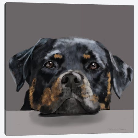 Rotweiller Canvas Print #VNE62} by Vicki Newton Canvas Art Print