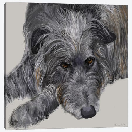 Scottish Deerhound Canvas Print #VNE64} by Vicki Newton Canvas Art