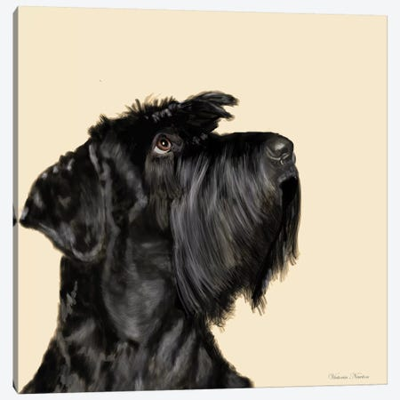 Scottish Terrier Canvas Print #VNE65} by Vicki Newton Canvas Artwork