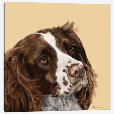 Spaniel Canvas Print #VNE67} by Vicki Newton Canvas Wall Art