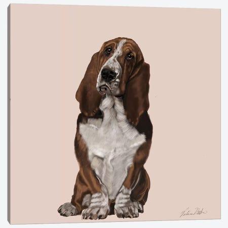 Bassett Hound Canvas Print #VNE6} by Vicki Newton Canvas Wall Art