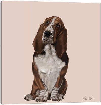 Bassett Hound Canvas Art Print