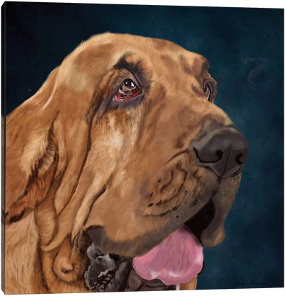 Bloodhound Canvas Art Print