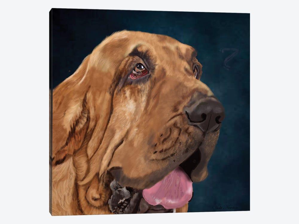 Bloodhound by Vicki Newton 1-piece Art Print