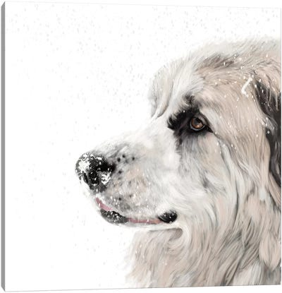 Great Pyrenees Canvas Art Print
